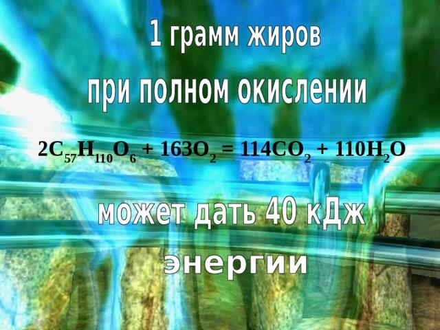 2C 57 H 110 O 6 + 163O 2 = 114CO 2 + 110H 2 O