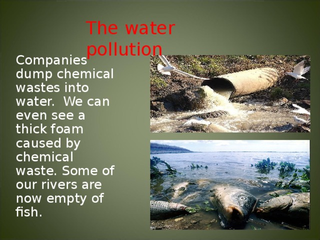 The water pollution Companies dump chemical wastes into water. We can even see a thick foam caused by chemical waste. Some of our rivers are now empty of fish.