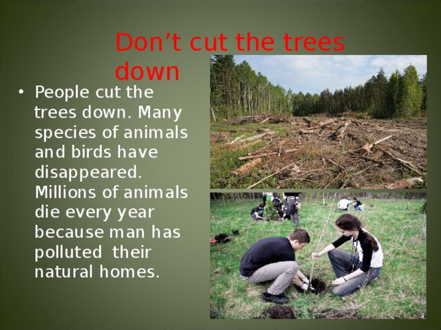 Don't cut the trees down