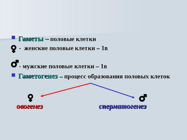 Гаметы –  половые клетки  - женские половые клетки – 1n   - мужские половые клетки – 1n Гаметогенез – процесс образования половых клеток