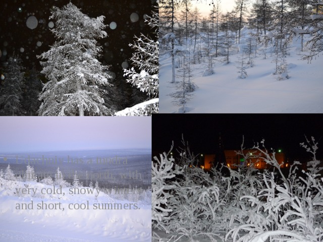 Udachniy has a tundra climate in the north, with very cold, snowy winters and short, cool summers.