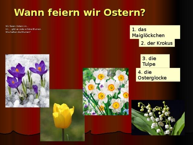 Wann feiern wir Ostern? Wir feiern Ostern im … Im …  gibt es viele schöne Blumen. Wie heißen die Blumen? 1. das Maiglöckchen 2. der Krokus 3. die Tulpe 4. die Osterglocke