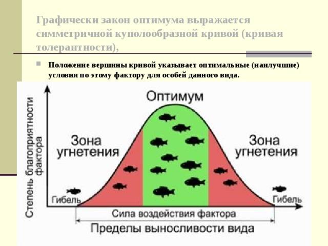 Графически закон оптимума выражается симметричной куполообразной кривой (кривая толерантности),