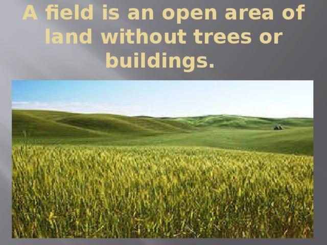 A field is an open area of land without trees or buildings.