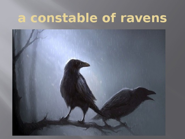 a constable of ravens
