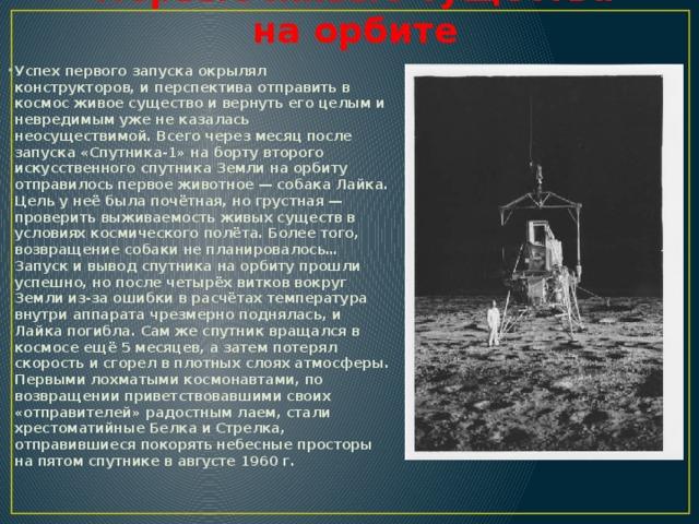 Первые живые существа на орбите
