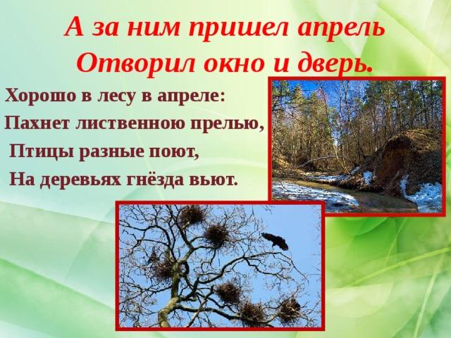 А за ним пришел апрель  Отворил окно и дверь. Хорошо в лесу в апреле: Пахнет лиственною прелью,  Птицы разные поют,  На деревьях гнёзда вьют.