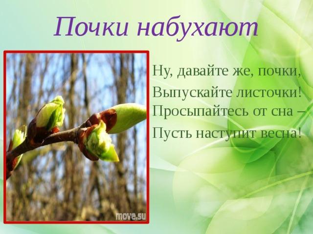 Почки набухают Ну, давайте же, почки, Выпускайте листочки! Просыпайтесь от сна – Пусть наступит весна!