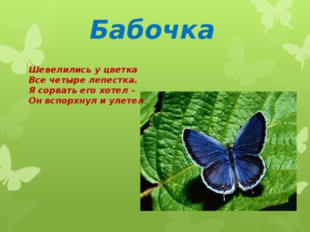 Бабочка Шевелились у цветка Все четыре лепестка. Я сорвать его хотел - Он вспорхнул и улетел .