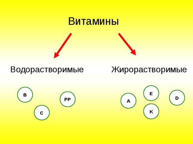 Витамины Водорастворимые Жирорастворимые E В D PP A K C
