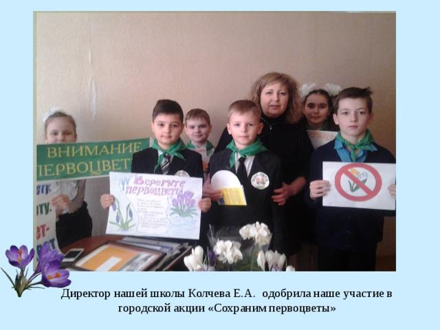Директор нашей школы Колчева Е.А. одобрила наше участие в городской акции «Сохраним первоцветы»