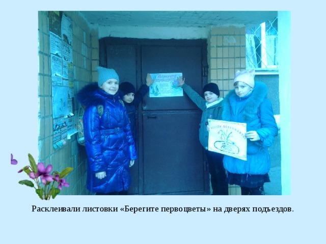 Расклеивали листовки «Берегите первоцветы» на дверях подъездов.