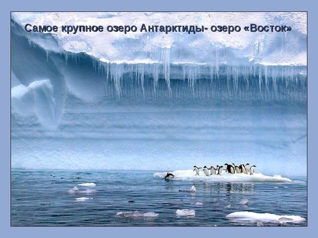 Самое крупное озеро Антарктиды- озеро «Восток»