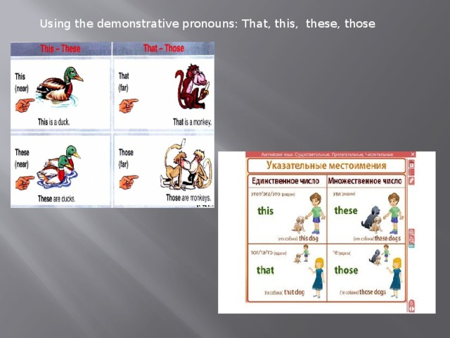 Using the demonstrative pronouns: That, this, these, those
