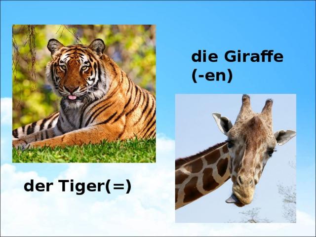 die Giraffe (-en) der Tiger(=)