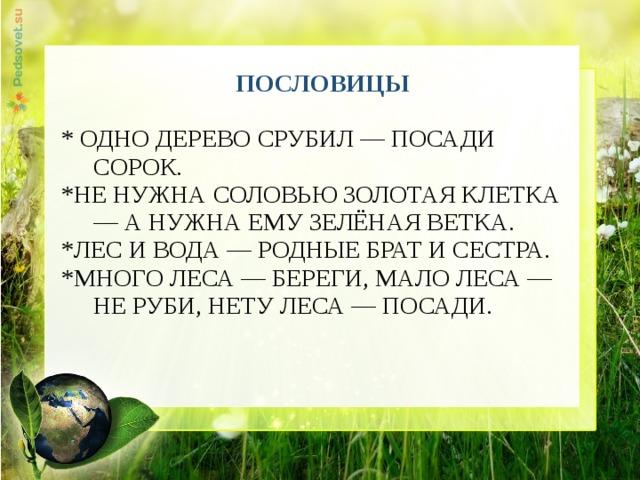 ПОСЛОВИЦЫ * ОДНО ДЕРЕВО СРУБИЛ — ПОСАДИ СОРОК. *НЕ НУЖНА СОЛОВЬЮ ЗОЛОТАЯ КЛЕТКА — А НУЖНА ЕМУ ЗЕЛЁНАЯ ВЕТКА. *ЛЕС И ВОДА — РОДНЫЕ БРАТ И СЕСТРА. *МНОГО ЛЕСА — БЕРЕГИ, МАЛО ЛЕСА — НЕ РУБИ, НЕТУ ЛЕСА — ПОСАДИ.