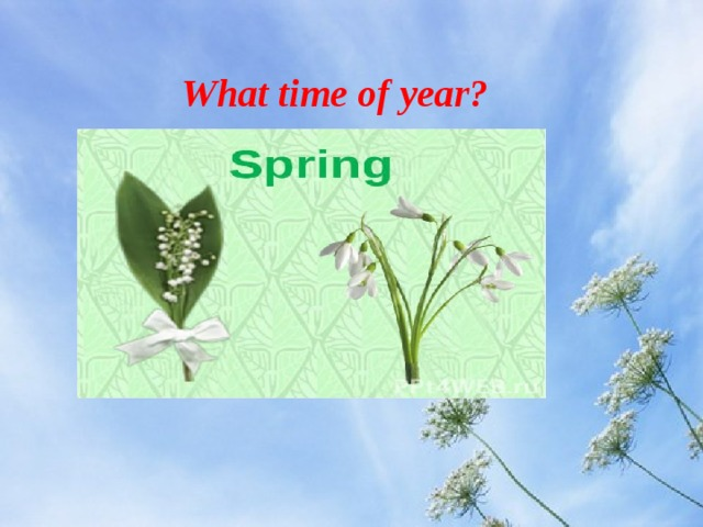 What time of year?