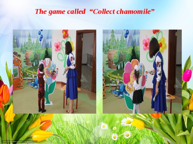 "The game called ""Collect chamomile"""