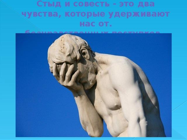 Стыд и совесть - это два чувства, которые удерживают нас от.  безнравственных поступков.