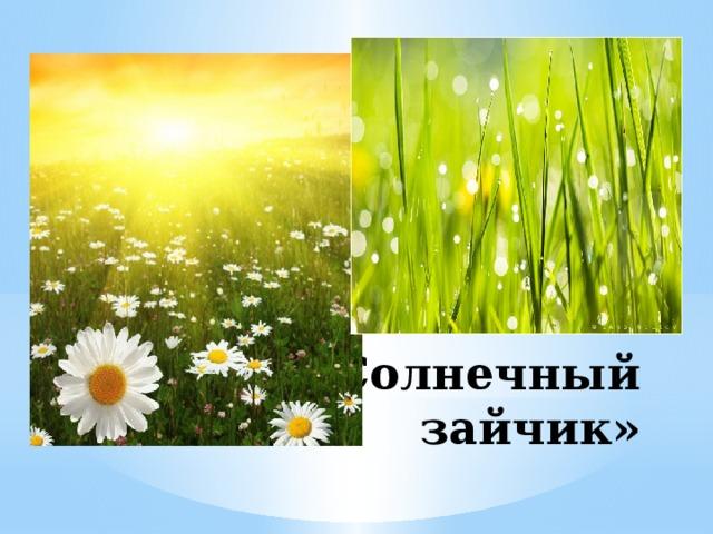 «Солнечный зайчик»