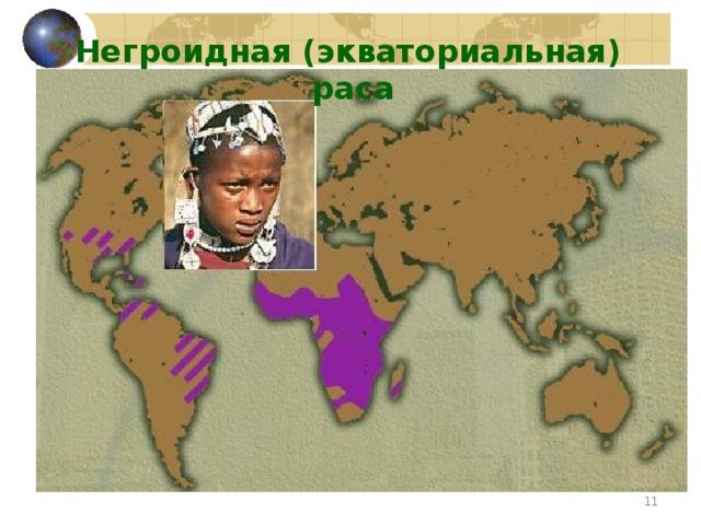 Негроидная (экваториальная) раса