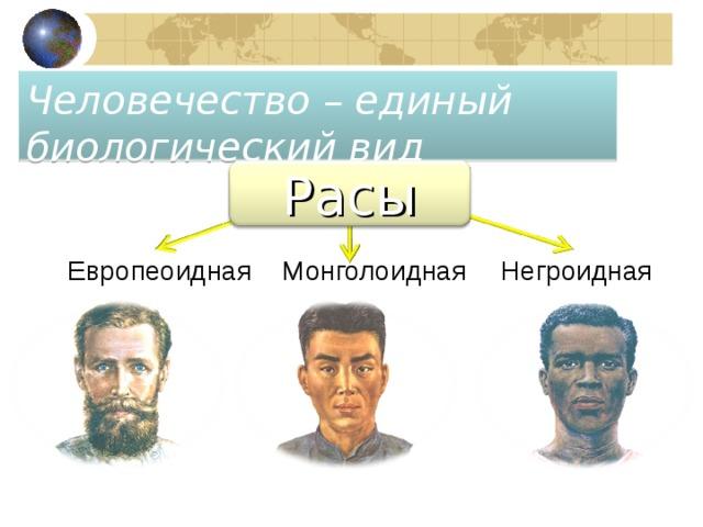Человечество – единый биологический вид Расы Европеоидная Монголоидная Негроидная