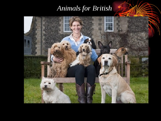 Animals for British