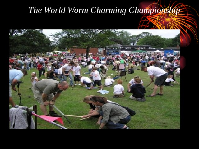 The World Worm Charming Championship