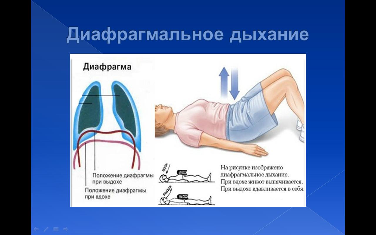 приложение для картинки дыхание при пении хризантемой вообще все