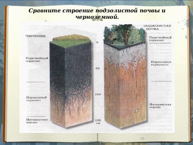 Сравните строение подзолистой почвы и черноземной. Найдите черты сходства и различия.