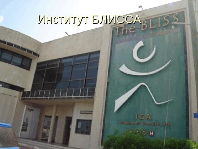 Институт БЛИССА