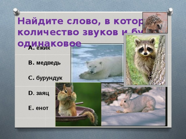 Найдите слово, в котором количество звуков и букв одинаковое A. ёжик  B. медведь  C. бурундук  D . заяц  E. енот