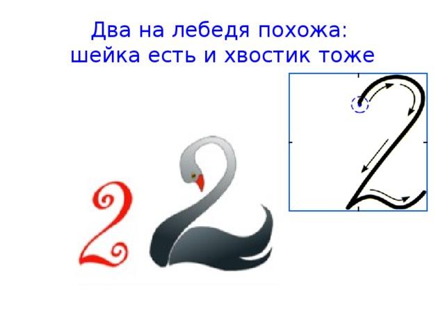 лебедь цифра два в картинках психологические факторы