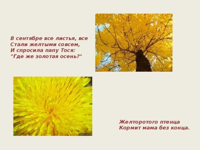 В сентябре все листья, все  Стали желтыми совсем,  И спросила папу Тося: