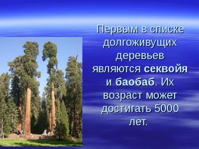 Первым в списке долгоживущих деревьев являются секвойя и баобаб . Их возраст может достигать 5000 лет.