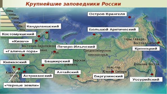 Крупнейшие заповедники России