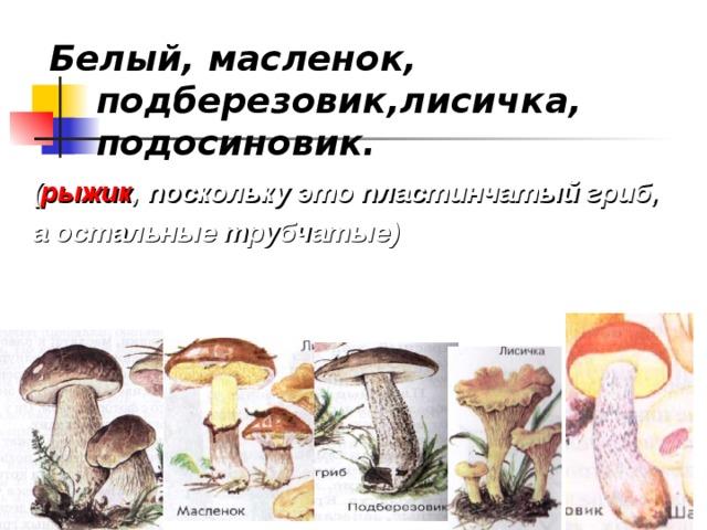 Белый, масленок, подберезовик,лисичка, подосиновик. ( рыжик , поскольку это пластинчатый гриб, а остальные трубчатые)