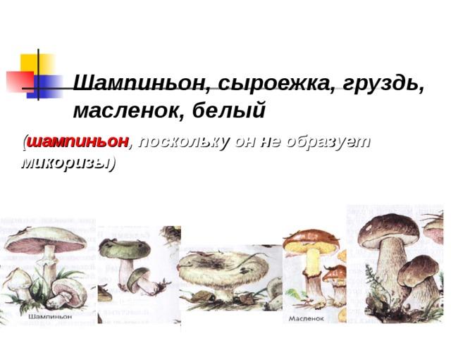 шампиньон гриб паразит