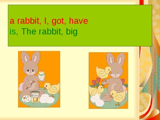 a rabbit, I, got, have   is,  The rabbit, big