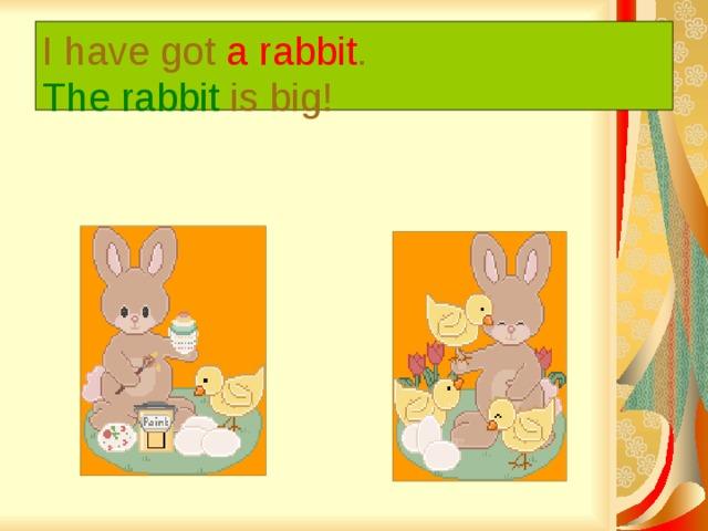 I have got a rabbit .  The rabbit is big!