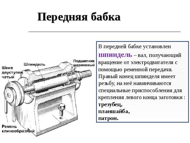 Передняя бабка В передней бабке установлен шпиндель – вал, получающий вращение от электродвигателя с помощью ременной передачи. Правый конец шпинделя имеет резьбу, на неё навинчиваются специальные приспособления для крепления левого конца заготовки : трезубец, планшайба, патрон.