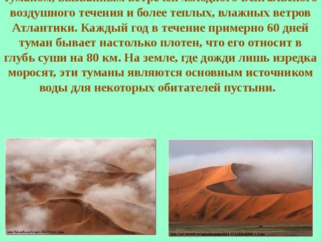 Берег возле Великого Песчаного моря часто окутан туманом, вызванным встречей холодного Бенгальского воздушного течения и более теплых, влажных ветров Атлантики. Каждый год в течение примерно 60 дней туман бывает настолько плотен, что его относит в глубь суши на 80 км. На земле, где дожди лишь изредка моросят, эти туманы являются основным источником воды для некоторых обитателей пустыни.