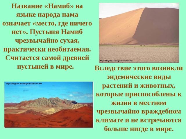 Название «Намиб» на языке народа нама означает «место, где ничего нет». Пустыня Намиб чрезвычайно сухая, практически необитаемая. Считается самой древней пустыней в мире.  Вследствие этого возникли эндемические виды растений и животных, которые приспособлены к жизни в местном чрезвычайно враждебном климате и не встречаются больше нигде в мире.