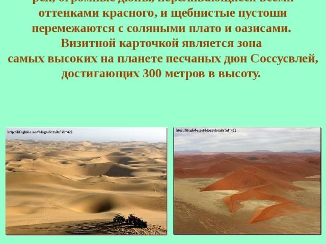Пейзажи пустыни Намиб поистине уникальны и неповторимы: выветренные скалы, каньоны сухих рек, огромные дюны, переливающиеся всеми оттенками красного, и щебнистые пустоши перемежаются с соляными плато и оазисами. Визитной карточкой является зона самых высоких на планете песчаных дюн Соссусвлей, достигающих 300 метров в высоту.
