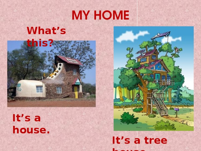 MY HOME What's this? It's a house. It's a tree house.