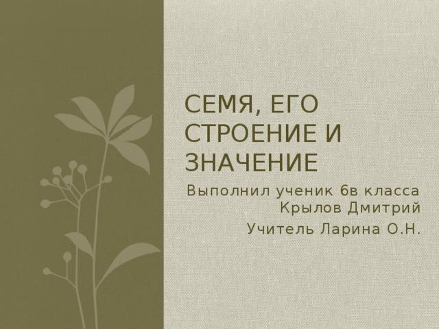 Семя, его строение и значение Выполнил ученик 6в класса Крылов Дмитрий Учитель Ларина О.Н.