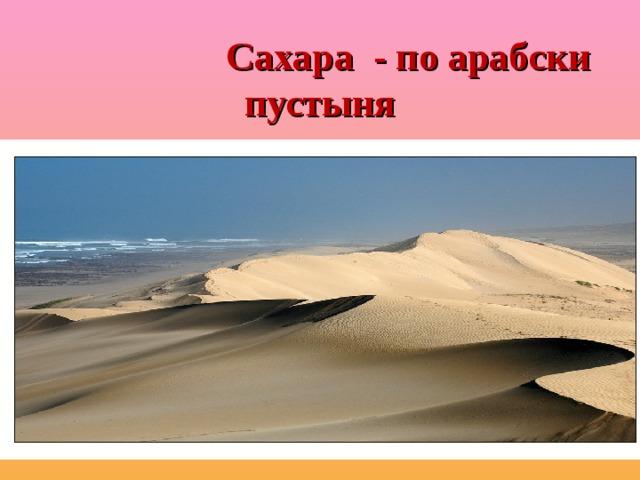 Сахара - по арабски пустыня