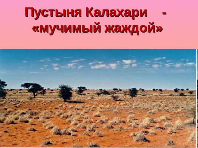 Пустыня Калахари - «мучимый жаждой»