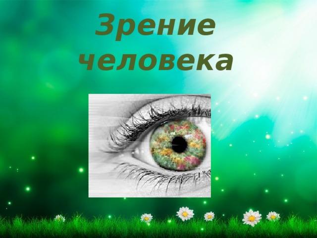 Зрение человека