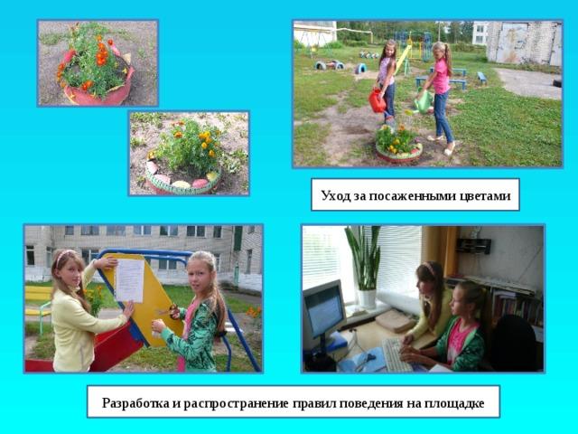 Уход за посаженными цветами Разработка и распространение правил поведения на площадке